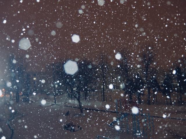 雪が舞う中での練習